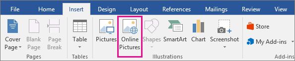 Tinklo paveikslėlių piktograma pažymėta skirtuke Įterpimas.