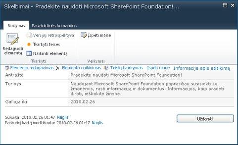 """""""SharePoint Designer"""" formos"""