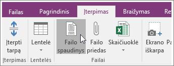"""Failo spaudinys mygtuko ekrano kopija programoje """"OneNote 2016""""."""
