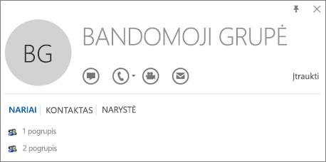 """Grupės Bandomoji grupė """"Outlook"""" kontakto kortelės skirtuko Nariai ekrano nuotrauka. 1 pogrupis ir 2 pogrupis rodomi kaip nariai."""