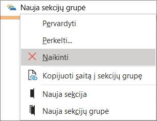 """Sekcijų grupės naikinimas programos """"OneNote"""", skirtos """"Windows"""", dialogo lange"""