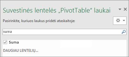 """""""PivotTable"""" laukų srityje rodomi ieškos rezultatai"""