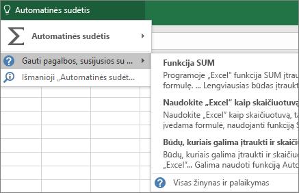 """""""Excel"""" pagalba"""