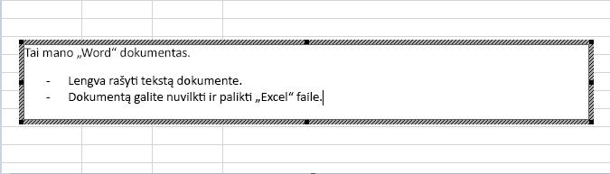 """Šis įdėtasis objektas yra """"Word"""" dokumentas."""