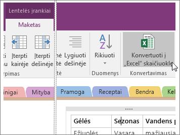 """""""OneNote 2016"""" mygtuko Konvertuoti į """"Excel"""" skaičiuoklę ekrano kopija."""