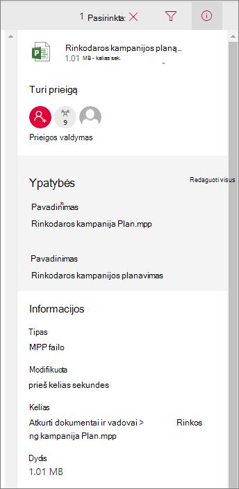 Peržiūrėti failo informaciją