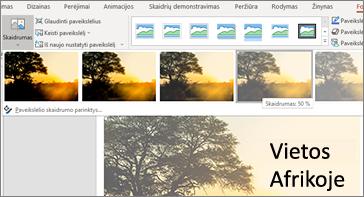 Skaidrė su skaidrumo parinktimis skirtuke Formatas