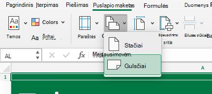 Rodo naujus spausdinimo parametrus