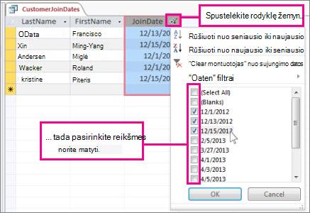 Užklausos stulpelio filtravimas kompiuterio duomenų bazėje.
