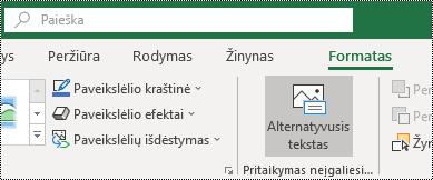 """Alternatyviojo teksto mygtukas """"Excel for Windows"""" juostelėje"""