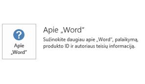 """Kai """"Office"""" įdiegtas naudojant """"Microsoft Installer"""", programos ir naujinimo informacija atrodo taip."""