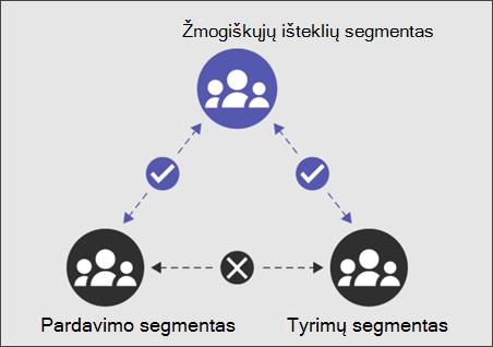 IB segmentas