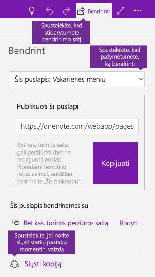 """Pastabų kopijos siuntimo iš programos """"OneNote"""" ekrano nuotrauka"""