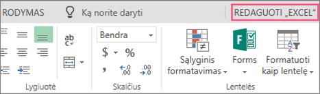 """Mygtukas redaguoti programoje """"Excel"""""""
