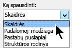Dialogo lango Spausdinimas dalyje ką spausdinti, pasirinkite skaidres