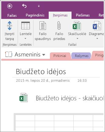 """Naujos skaičiuoklės programoje """"OneNote 2016"""" ekrano nuotrauka."""