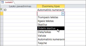Duomenų tipo sąrašas su paryškintu Didelis skaičius