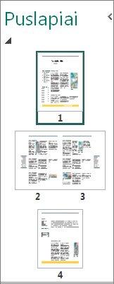 Puslapio naršymo srityje rodomi abu vieno ir dviejų puslapių skaidiniai.