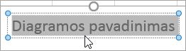 Diagramos pavadinimo teksto žymėjimas