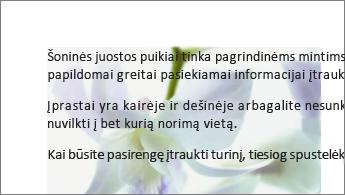 Už teksto bloko esančio paveikslėlio pavyzdys