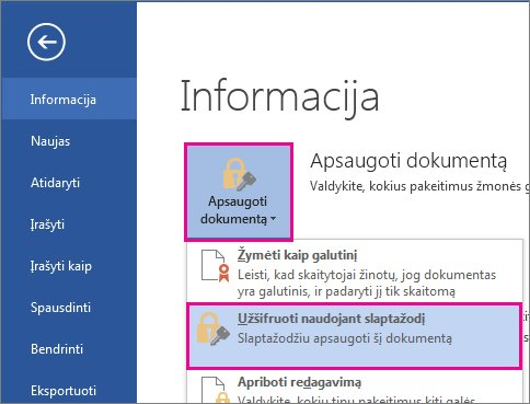 Dokumento apsauga slaptažodžiu