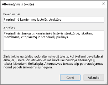 """Programos """"OneNote"""" alternatyviojo teksto dialogo lango su teksto pavyzdžiais laukuose Pavadinimas ir Aprašas ekrano nuotrauka."""
