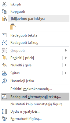 """Programos """"Excel"""" (Win32) figūroms skirtas meniu Redaguoti alternatyvųjį tekstą"""