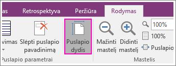 """Puslapio dydžio mygtuko ekrano nuotrauka programoje """"OneNote 2016""""."""