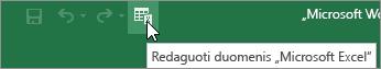 """Sparčiosios prieigos įrankių juostoje esanti piktograma Redaguoti duomenis """"Microsoft Excel"""""""