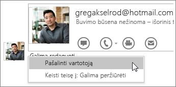 """Bendrinimo stabdymo parinkčių programoje """"OneNote 2016"""" ekrano nuotrauka."""
