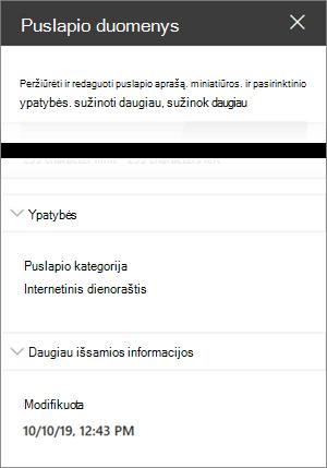 Puslapio išsamios informacijos sritis, kurioje yra interneto dienoraščio kategorijos puslapis