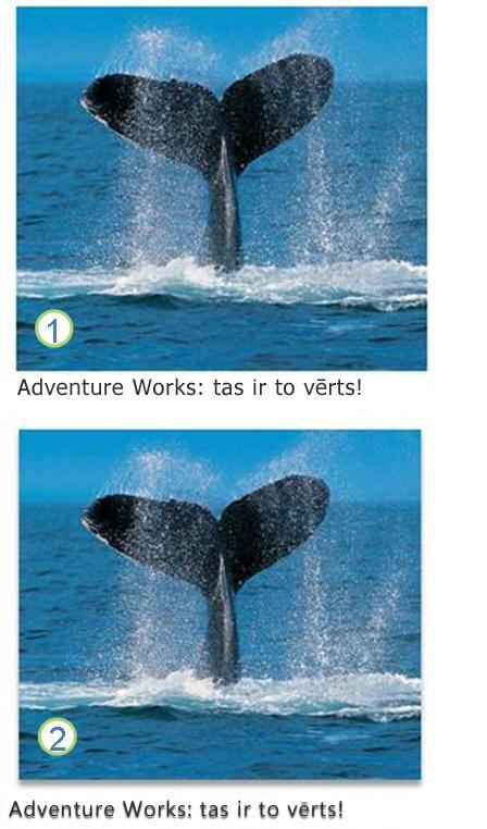 Teksta un attēlu efekti