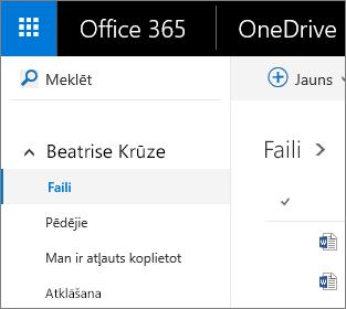Failu skata ekrānuzņēmums pakalpojumā OneDrive darbam