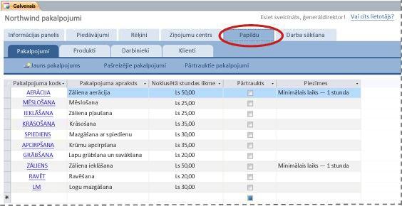 Pakalpojumu datu bāzes veidnes cilne Papildu