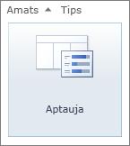 SharePoint 2010 aptaujas ikona