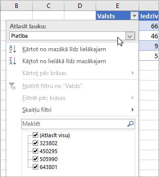Filtru izvēlne, parādāmo vērtību izvēlne, norādīto saistīto datu tipu lauki