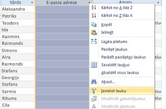 Analīzes shēma, kas atvērta jaunā pārlūkprogrammas logā