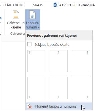 Lappušu numuru galerijā atlasītas opcijas Noņemt lappušu numurus attēls