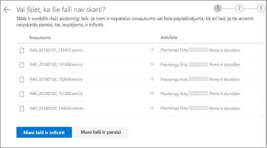 Ekrānuzņēmums, kurā attēloti šie faili OneDrive tīmekļa vietnē izskatās pareizi
