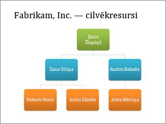Organizācijas diagramma