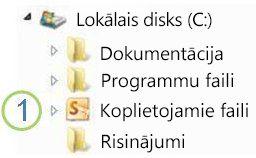 ikona koplietojamās mapes programmā windows explorer