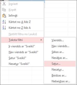 Kontekstizvēlne, kurā tiek rādītas teksta filtrēšanas opcijas
