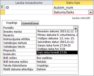 Lauka Datums/laiks rekvizīts Format