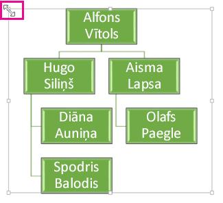 Organizācijas diagrammas izmēru maiņa