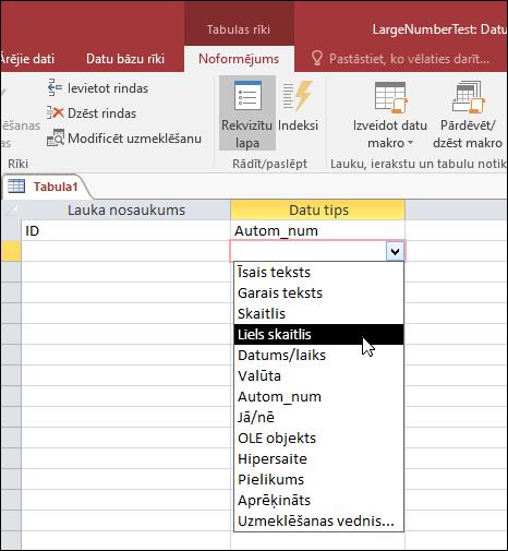 Ekrānuzņēmums ar datu tipu sarakstu Access tabulā. Ir atlasīta opcija Lielie skaitļi.