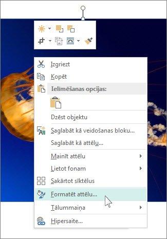 Ekrānuzņēmums, kurā redzamas opcijas Formatēt attēlu programmā Publisher.