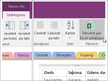 Ekrānuzņēmums, kurā redzama poga Pārvērst par Excel izklājlapu programmā OneNote2016.