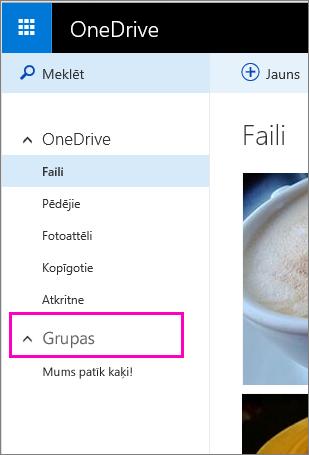 Windows Live grupas pakalpojumā OneDrive