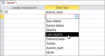 Datu tipu saraksts ar iezīmētu lielu skaitli