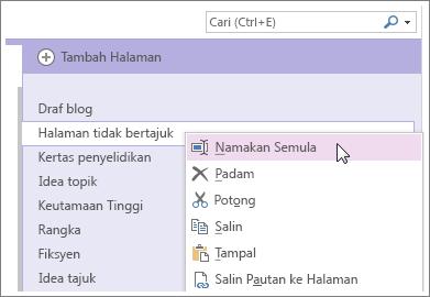 Klik kanan tab halaman untuk memberikan halaman anda nama baru.